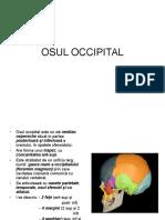 Osul Occipital