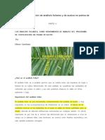 Curso de Interpretaacion de Dignostico Foliar en La Hoja 7