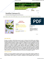 Sauco-Propiedades Del Sauco-Plantas Medicinales-Remedios Naturales