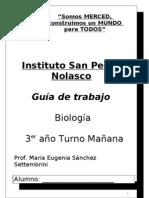 Guia de trabajo de 3° año Instituto San Pedro Nolasco