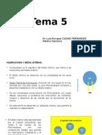 5 Homeostasis Del LEC medicina humada