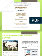 Diapositivas GANADO BOVINO