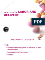 Normal Labor and Delivery
