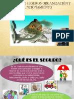 Empresas de Seguros Organizaxion y Funcionamiento