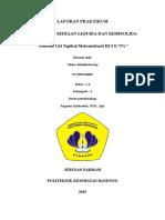 Laporan 8_Gel Metronidazole HCl_Ghina K_Kelompok IV_IA