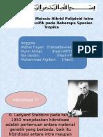 Tingkahlaku Meiosis Hibrid Poliploid Intra- dan   Interspesifik pada kelompok  2 sitogenetik.pptx