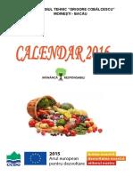 CALENDAR Cobalcescu.pdf