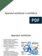 Cursul V ~ Aparatul vestibular