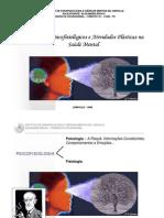 Mecanismos Psicofisiológicos e Atividades Plásticas na Saúde Mental