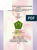 Cover Ppok
