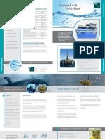 SubSeaLeakDetection.pdf
