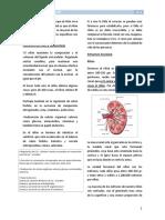 1RR. Filtración y Flujo - Fisiología II