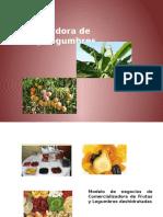 BM_Canvas Deshidratodra de Frutas y Legumbres