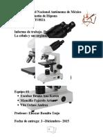 Biología - Práctica - Célula