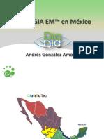 EM COMPOSTAJE PALMA ACEITERA en Mexico.pdf