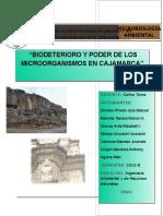 Biodeterioro en Cajamarca