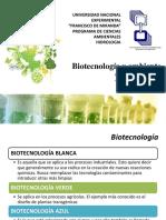 Biotecnologia y ambiente