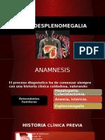 Hepatoesplenomegalia Clinica, Diagnostico.