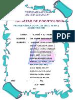 Problemática de Salud en El Perú