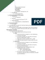 Endocrine System notes