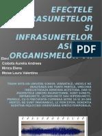 Efectele Ultrasunetelor Si Infrasunetelor Asupra Organismelor Vi2i