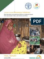 Small Scale Bioenergy Initiatives and its Impact on Livelihood