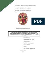 Informe de Senimario