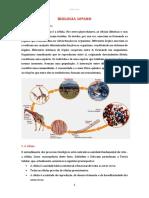 organizacaobiologica.pdf
