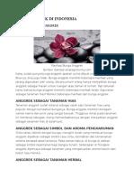 Jenis Anggrek Di Indonesia