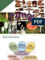 bab-5-fungi.ppt
