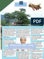 Revista Casi Completa Trabajo Grupal Revision 2 (3)