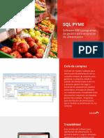 SQL Pyme para empresas de alimentación