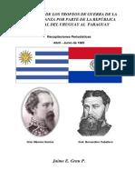 RECEPCCION DE LOS TROFEOS DE GUERRA - ABRIL A JUNIO 1885 - PARAGUAY - PORTALGUARANI