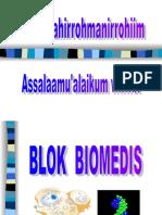 biomedis kbk