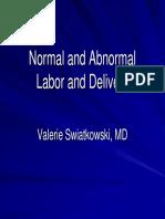 Swiatkowski Labor & Delivery[1]