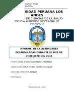 informe Nº 11 UPLA.docx