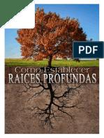 seminario_raices_profundas