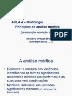 4. Morfologia - Princípios de Análise Mórfica
