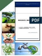 Monografia de Medio Ambiente