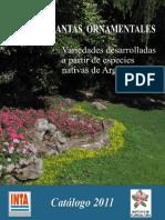 plantas ornamentales nativas