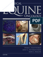 equine oncology