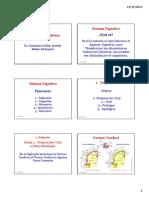 4B_Fisiología Sistema Digestivo.pdf