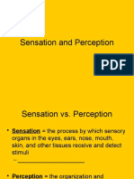 Chapter 3 - Sensation and Perception - Incomplete