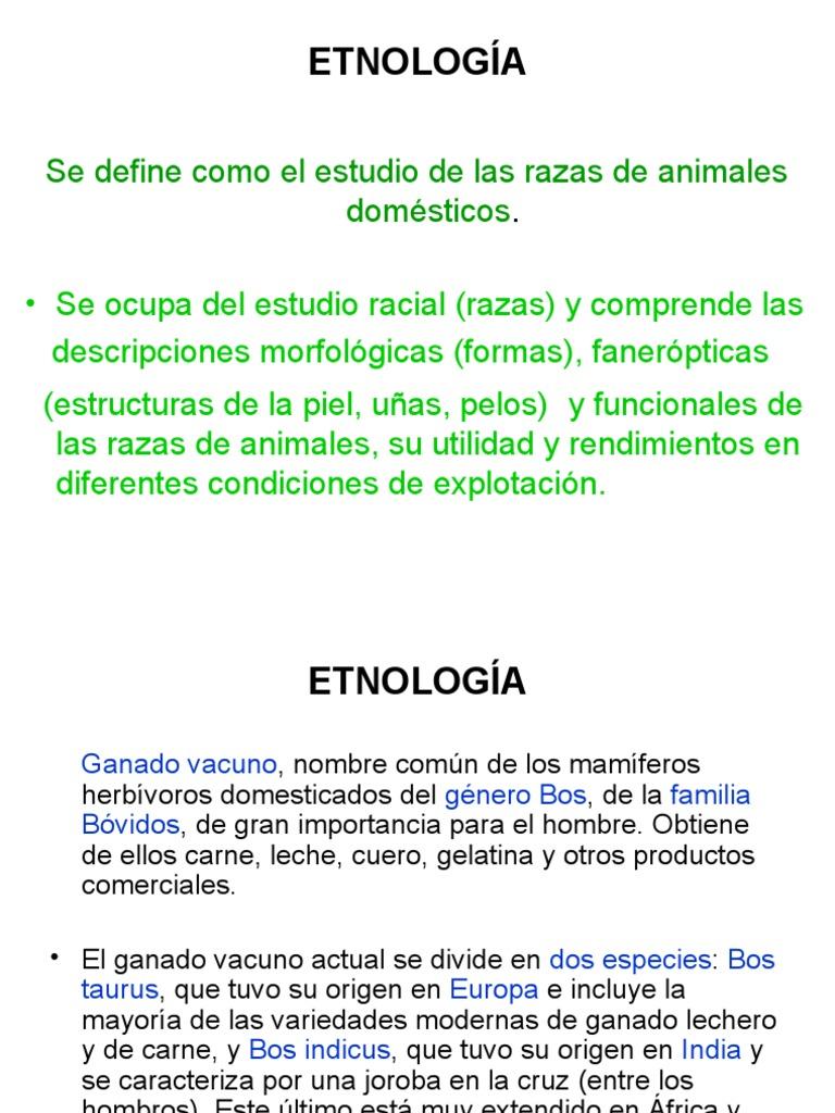 Myslide.es Etnologia Razas Generalidades Todos Animales Domesticos