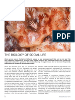 The biology of social life