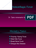 Dengu Fever