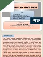 Planning an Invasion