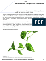 5 Plantas Que a Nasa Recomenda Para Purificar o Ar Da Sua Casa - Ciência - IG