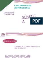 GENETICA (1)