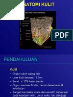 1.Anatomi n Fisiologi Kulit-kuliah